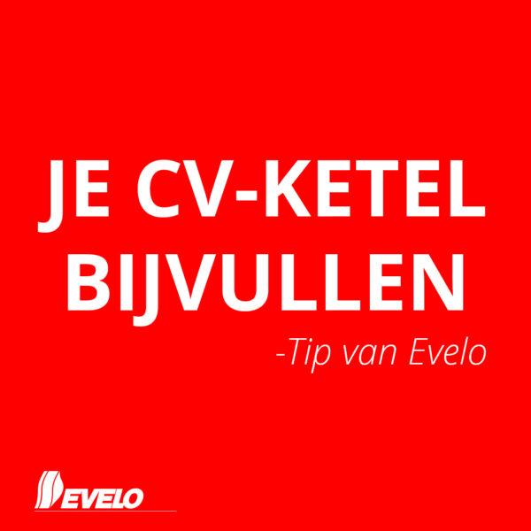 www.evelo.nl
